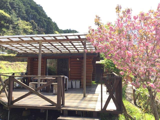 Nature Lodge / Nakatsu Onsen Historical Dogenji - Hidakagawa