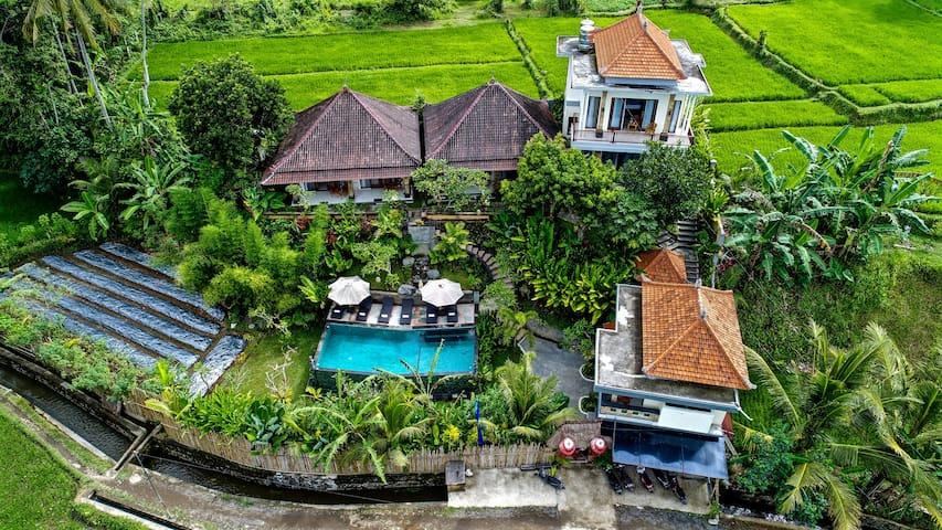 Tini Villa Deluxe King Suite - Room 2 - Tegallalang - Casa