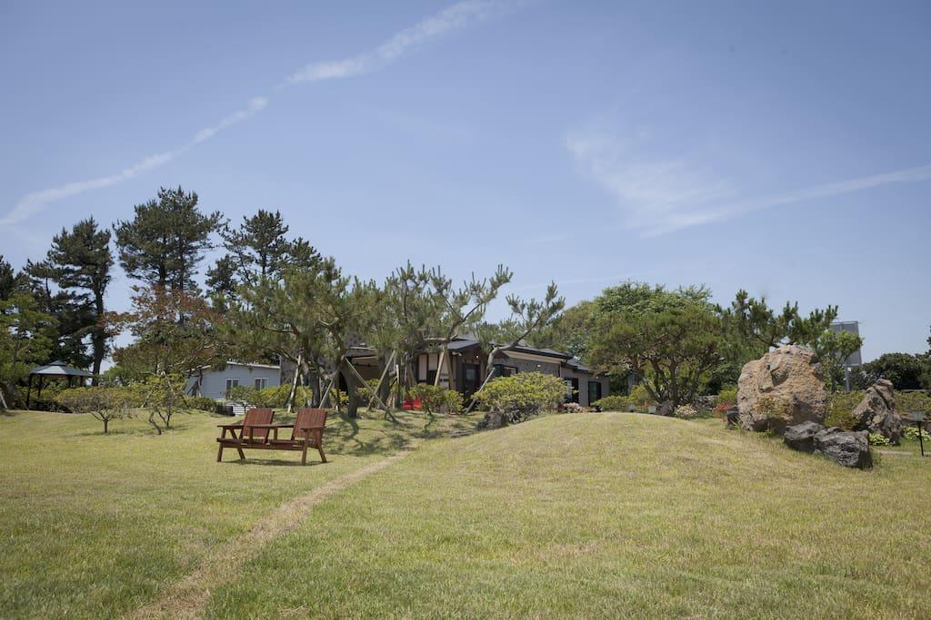 아이들과 함께 즐길 수 있는 소나무 잔디정원