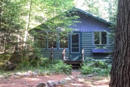 Niche in the Woods Cabin - Saranac Lake