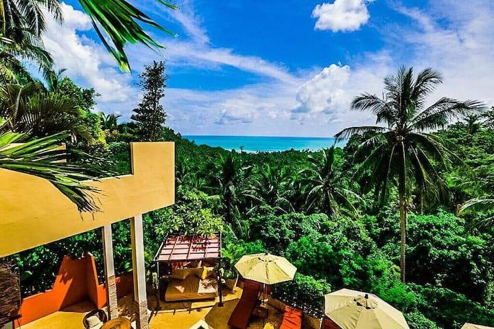 Samui Green Palm Resort Four Unit Package