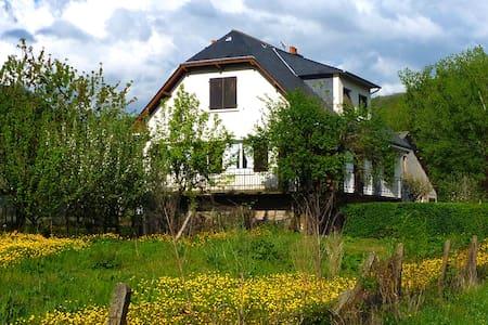 Spacieuse maison familiale - Marcillac-Vallon