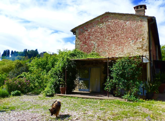 Cosy Chianti Retreat - Greve in Chianti - Bed & Breakfast
