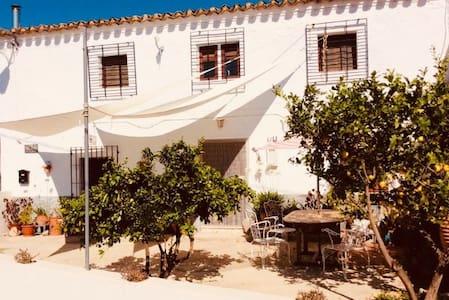Green Room - La Casa De La Sierra (VTAR)