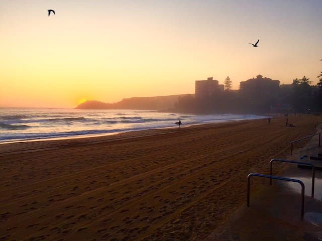 Manly Beach - Our apartment is 100m away from this spot. Get up early in Manly to see the sunrise and have a good start into the new day. Enjoy a run on the beach, a good surf, a swim to Shelly Beach (in the back where the sun rises), play beachvolley or join the bootcamps or yoga junkies