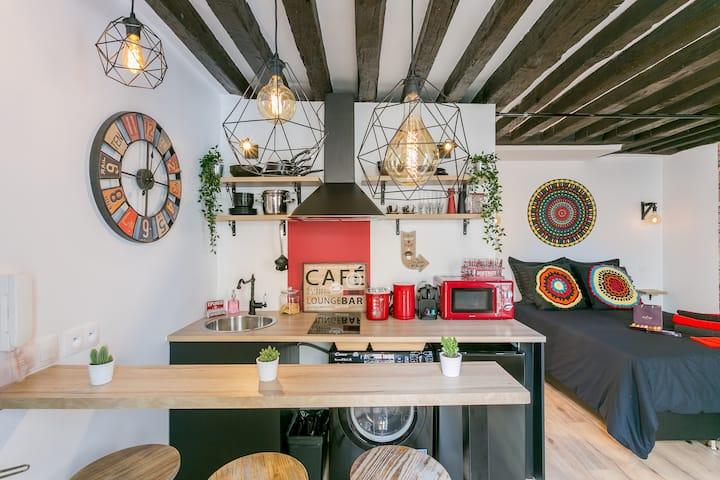 Nice & typical studio in central Paris Marais 4p