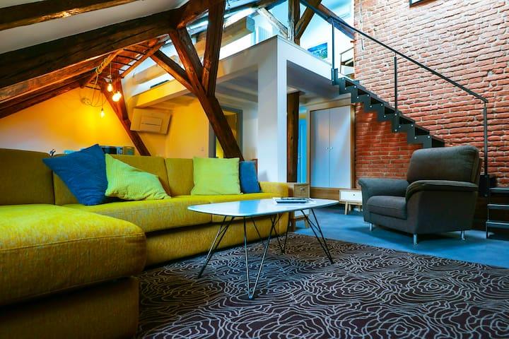 Apartments at the Blue Duckling - 5A room - Praha - Rumah