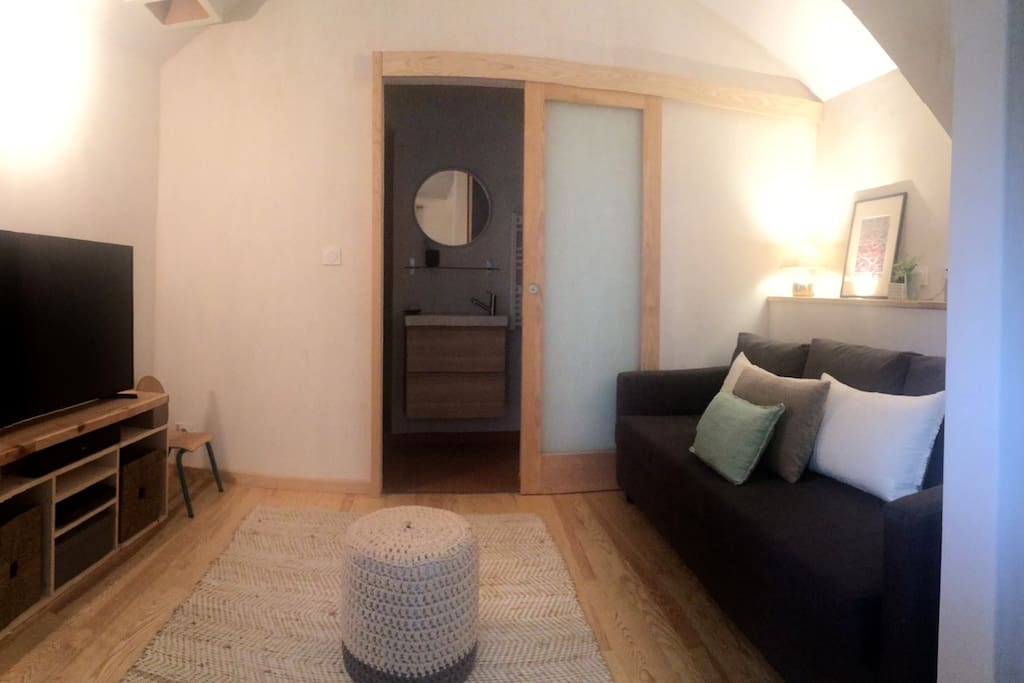 RDC, salon, canapé convertible 2 places, TV grand ecran et salle de bain.