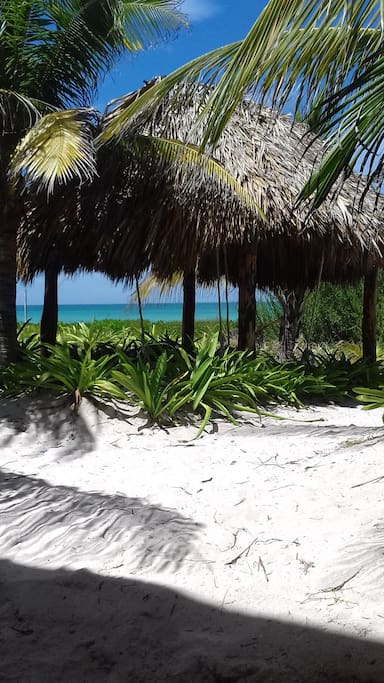 Our new palapa is a perfect place to enjoy the beach