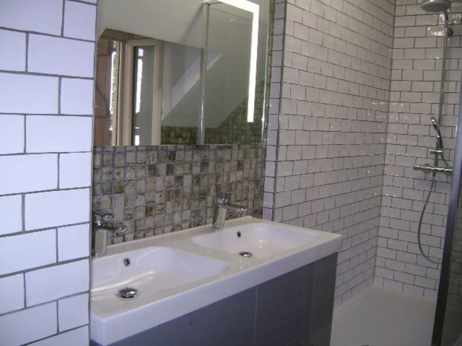 Double bowl sink and mirror