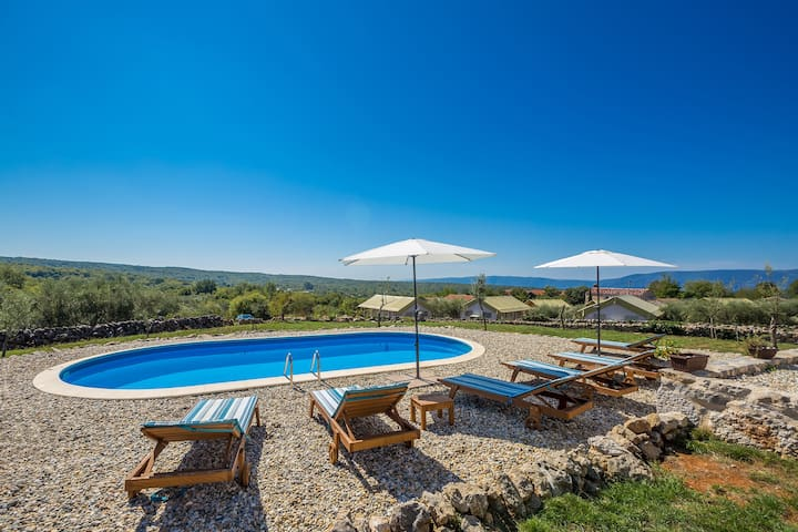 Holiday house with pool VIS VITALIS