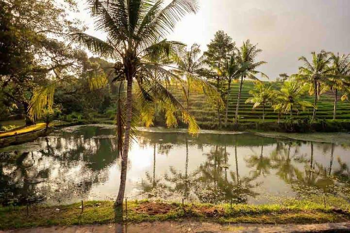 Alam Taman- Balinese Escape Bungalow 1