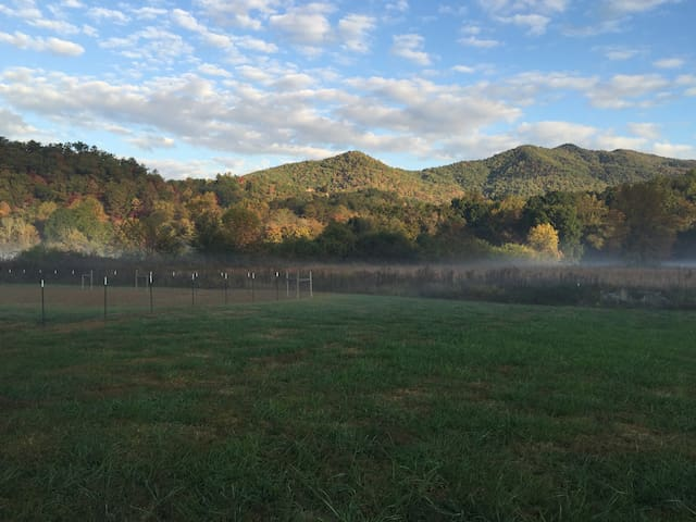 Plantation in the Meadow - Hayesville - Haus