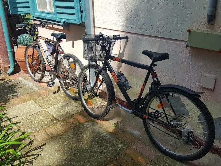 Terrace Studio, parking, bikes, wifi, garden, BBQ
