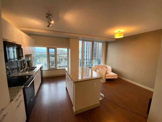 Nice One bedroom apartment right at downtown!