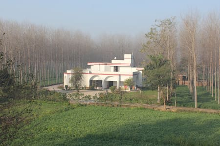 Country side farm (feel the real Punjab)