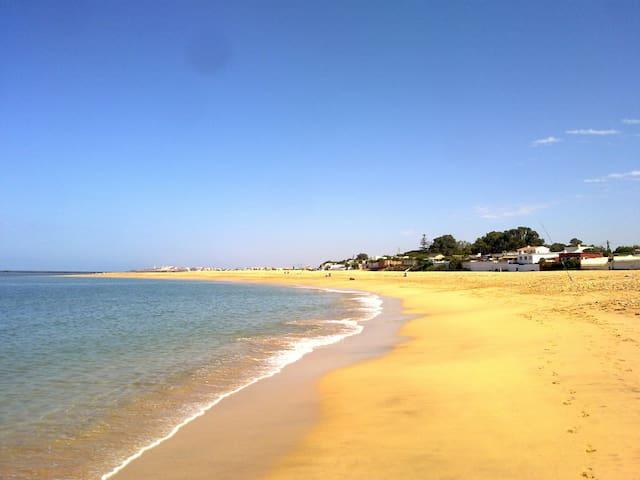 Cabanon plage Manessman