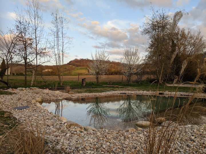 French Countryside Restored Barn with natural pool