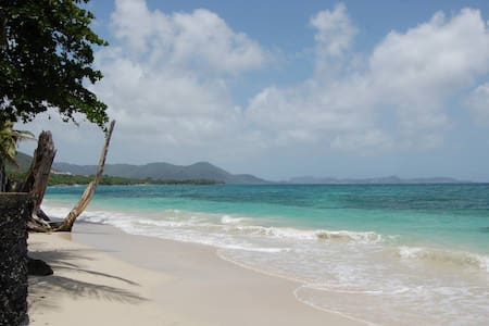 Le paradis en bord de mer, les pieds dan l'eau