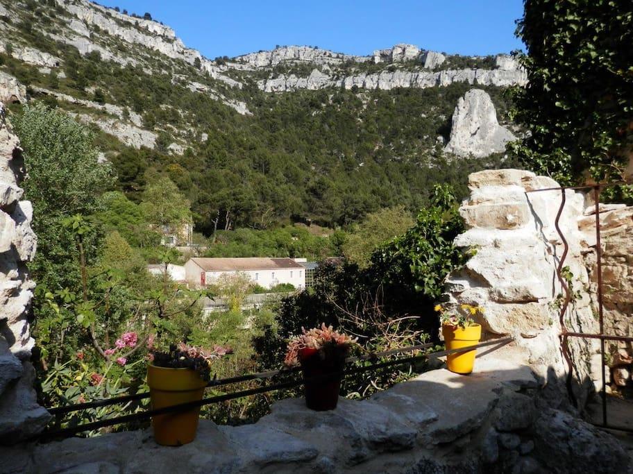 La vue depuis la terrasse ombragée View from shaded terrace