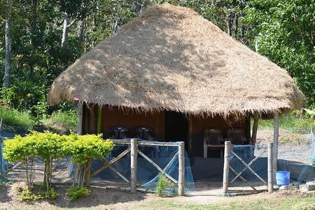 Mezzma @ Muthanga Wayanad - House