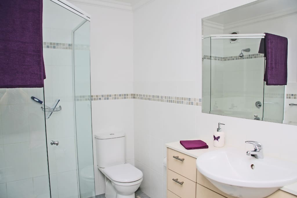 Ensuite toilet and shower
