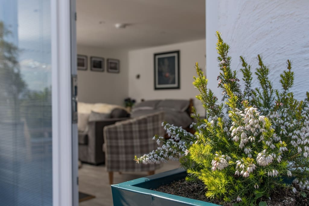 Cosy, clean and bright accommodation