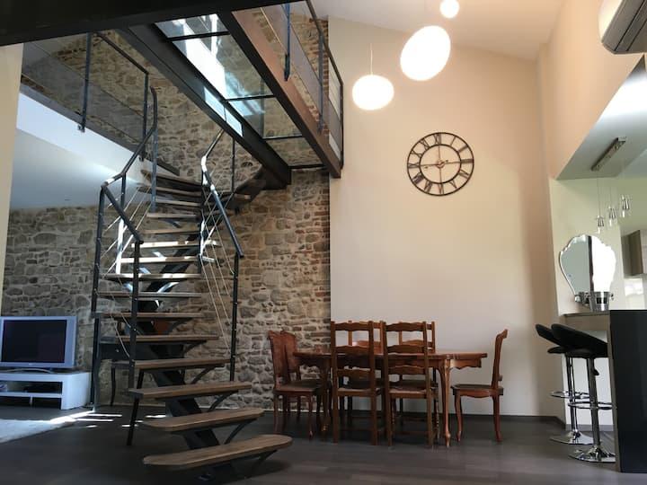 Appartement d'exception Albi centre