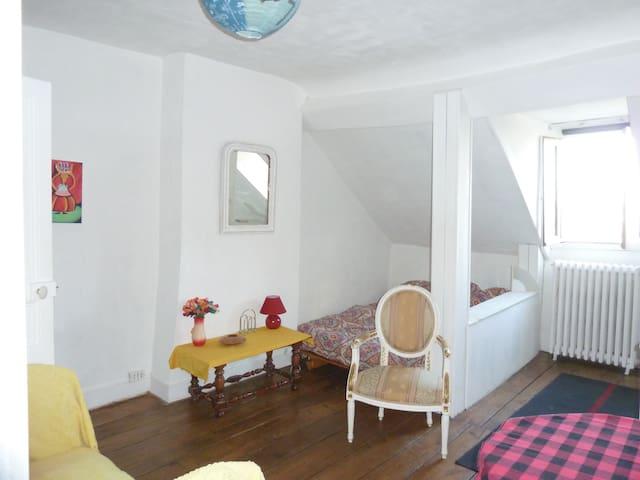 studio intime et acceuillant plein centre ville - Limoges - Appartement