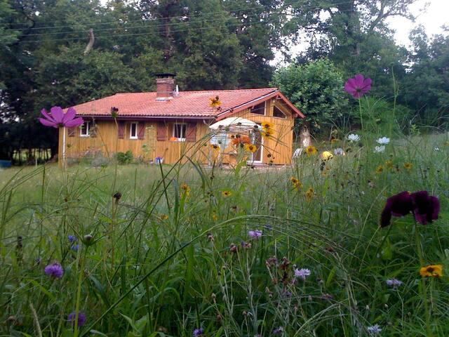 petite maison dans la prairie - Castets - Casa