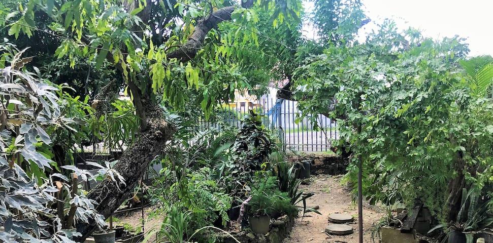 Beautiful garden apartment near San Fernando Hill