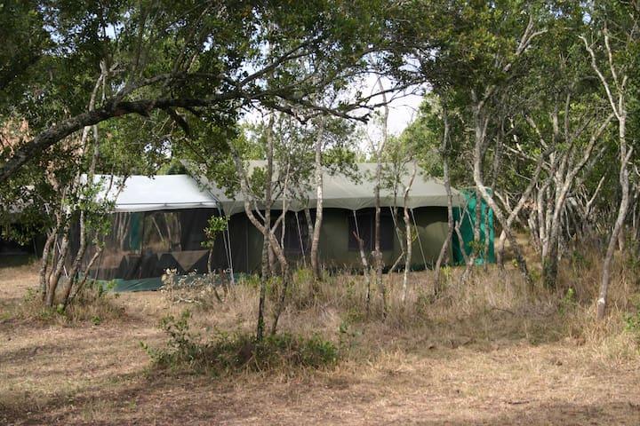 East African Wildlife Safaris, Kenya