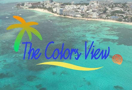 The Colors View