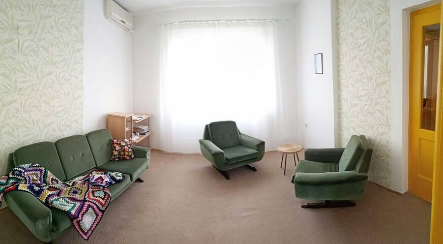 cozy apartment w/lots of sunlight close to Oldtown