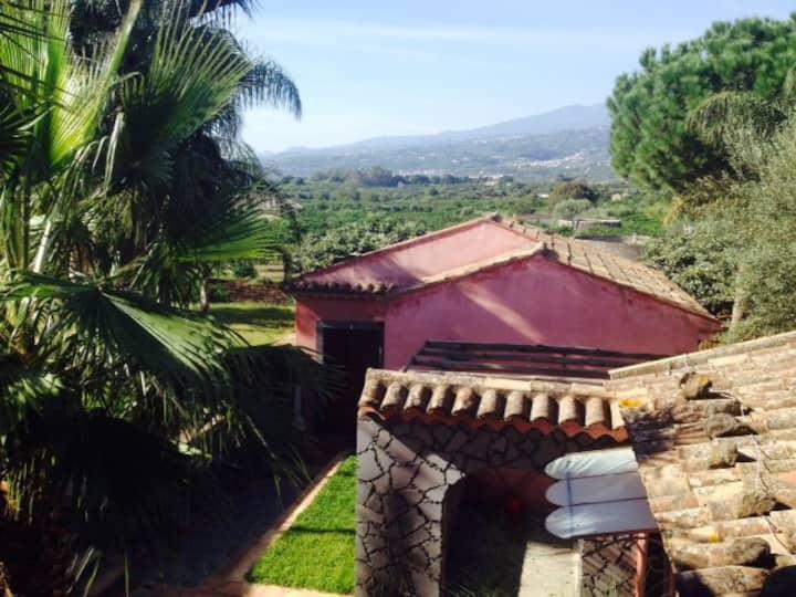 Villa Del Nespolo