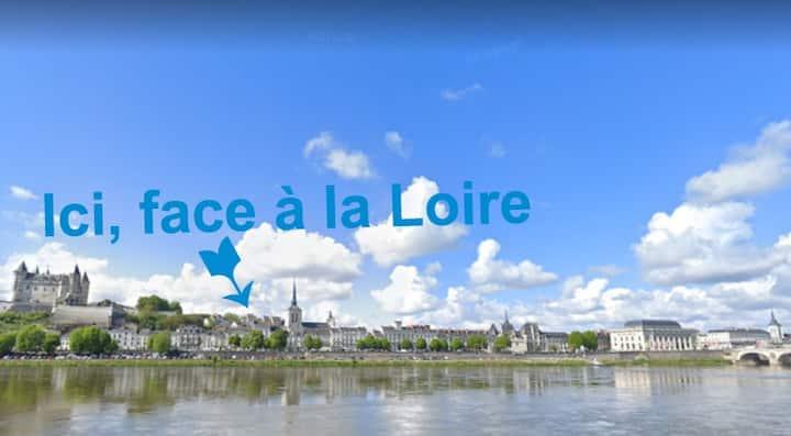 Charmant T2 Vue  Loire - Hyper Centre Historique