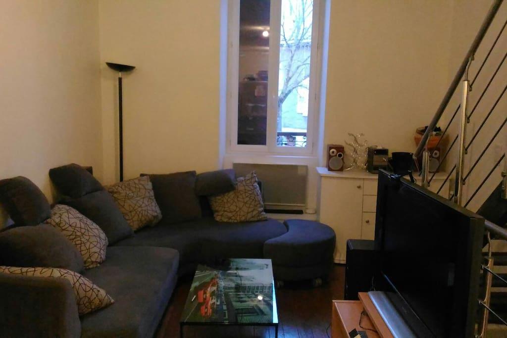 salon avec canapé très confortable et suffisamment large pour offrir un couchage.