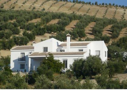 CORTIJO LAS MONTORAS, Alhama de Granada. - Bed & Breakfast