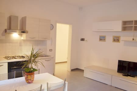 Central one bedroom with parking 4p - Livorno