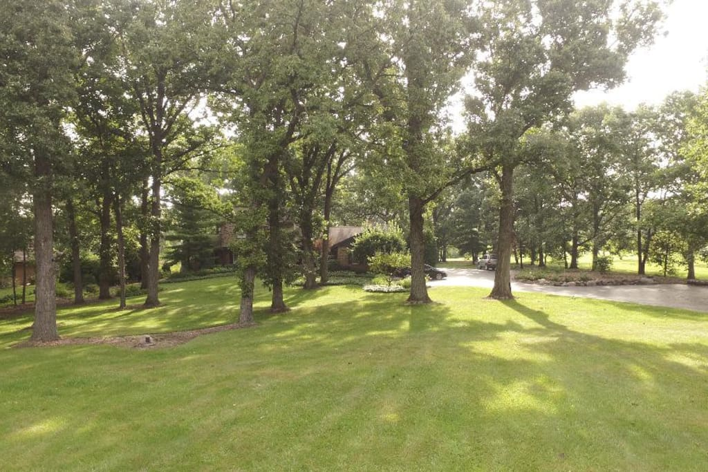 Privacy on 2 1/2 acres