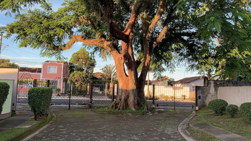 Vila italiana, Quiririm bairro centro gastronômico