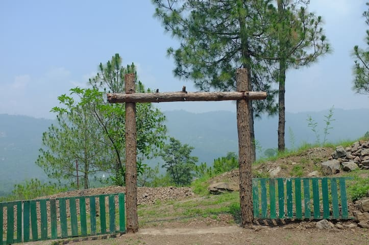 4 Jungle Huts for 8 Persons at PVR, Kasauli