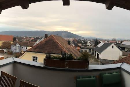 Über den Dächern - Saal an der Donau
