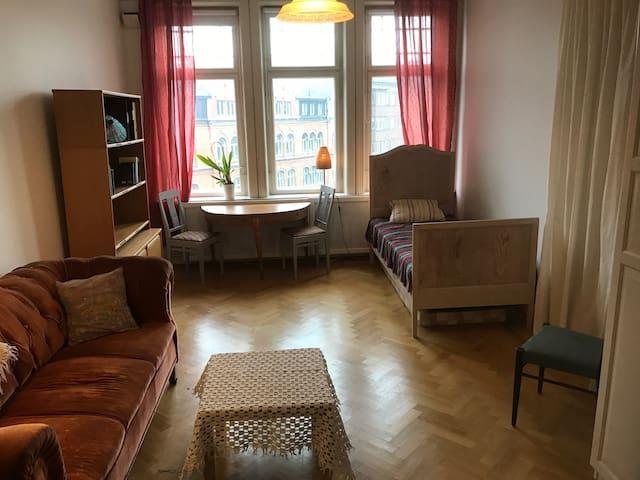 Sekelskifteshus i centrala Lund - Lund - Departamento