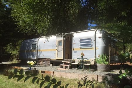 Airstream in the Redwoods & near the River - Arcata - Wohnwagen/Wohnmobil