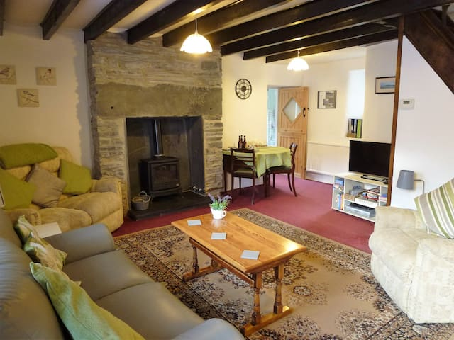 Living room with gas woodburner