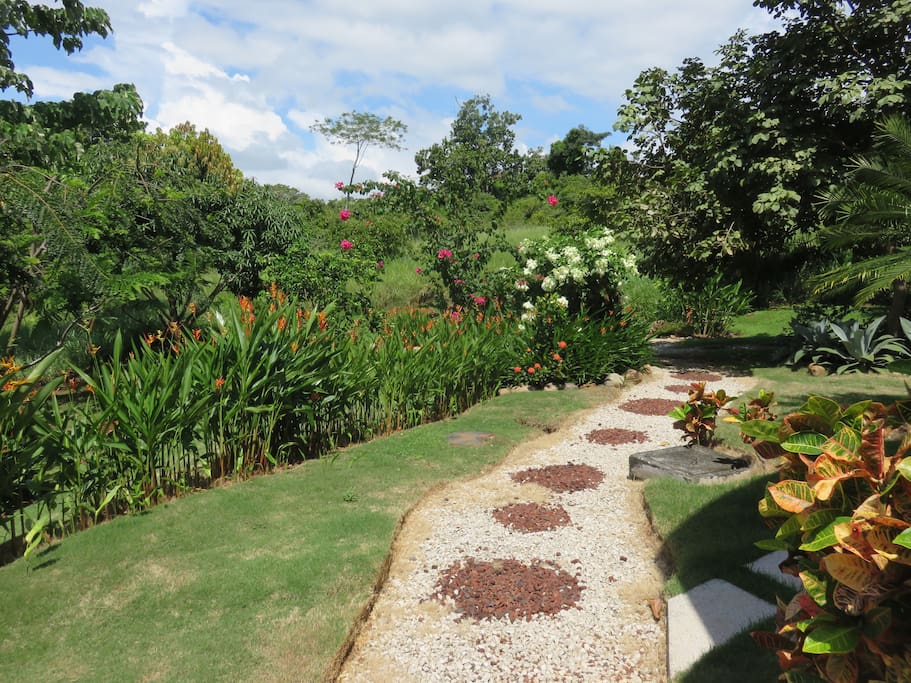 Stroll through the private garden We have flowers all year 'round and we have a Mango, Papaya, and Lime tree which all bear fruit during the right seasons. There are also some young fruit trees and pineapple plants that haven't reached maturity yet.