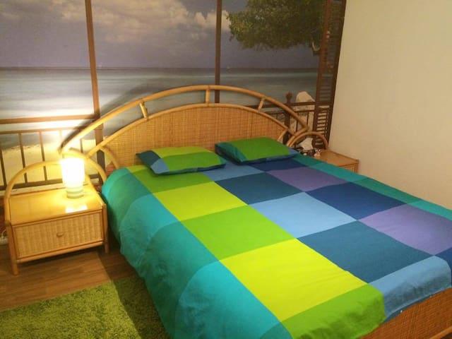 Belle chambre avec parking privé au centre Morges - Morges