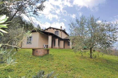 La calda accoglienza di Villa degli Olivi - Valfabbrica - Villa