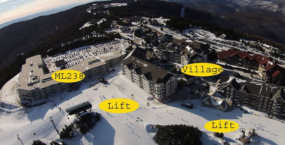 Ski/Bike In-Out 1BR 1BA Free Wi-Fi & Parking ML238 - Snowshoe - Huoneisto